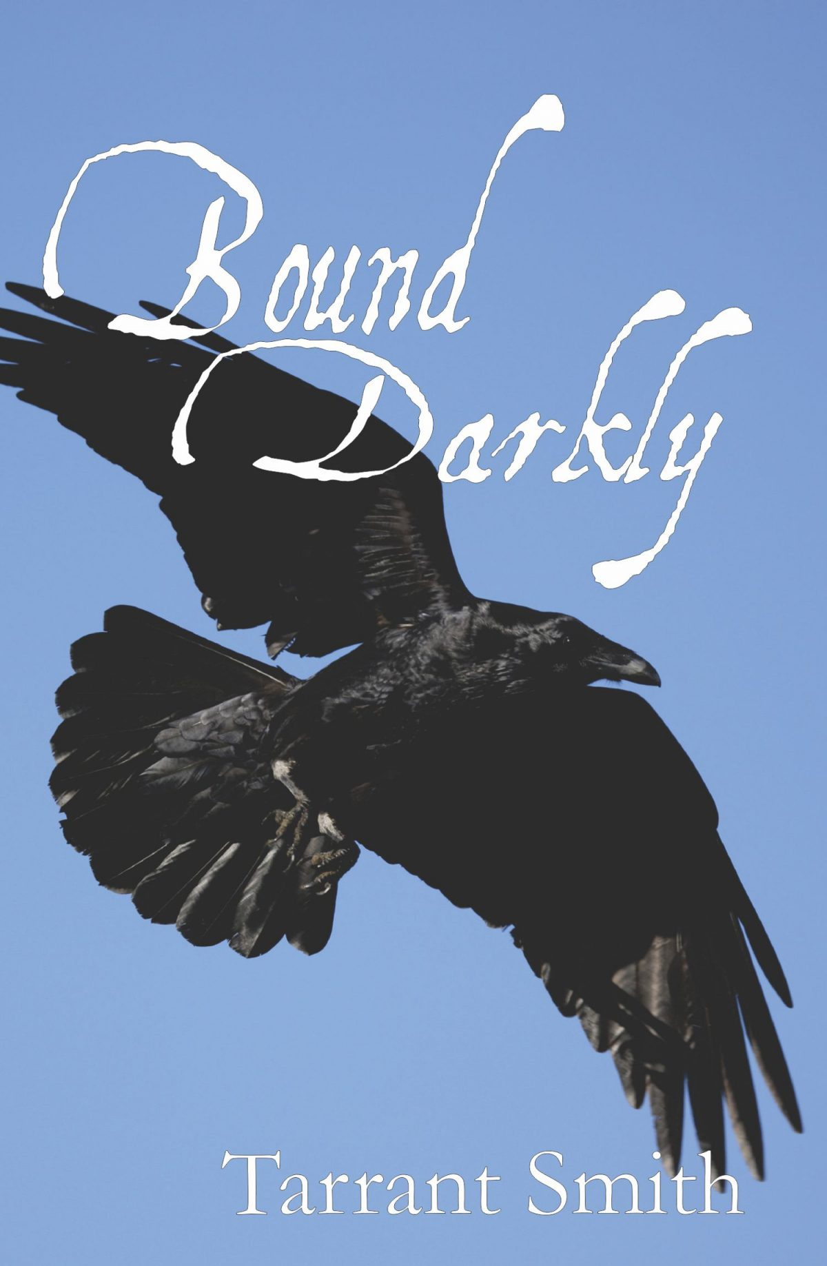 Author Interview: A Proven Warrior (Bound Darkly)
